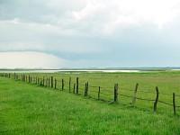 Łąki Łebskich Błot, w oddali widać wydmy SPN