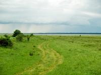 Łąki Łebskich Błot nad jeziorem Łebsko