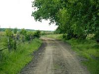 Ścieżka Przyrodnicza Łebskie Błota